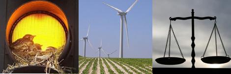 Conseil d'Etat pour les éoliennes de la Plaine de Boneffe