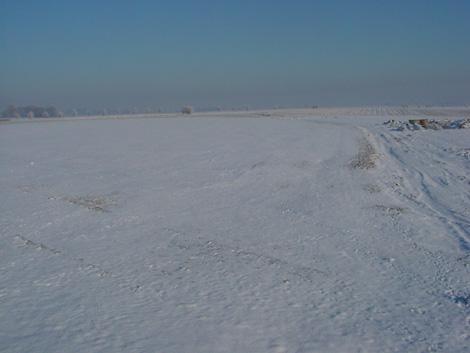 La plaine de Boneffe sous - 10° ce 10 janvier 2009 sous un manteau de neige