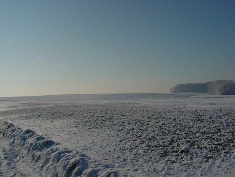 La plaine de Boneffe sous - 10° ce 10 janvier 2009