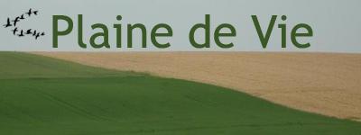 Logo de Plaine de Vie