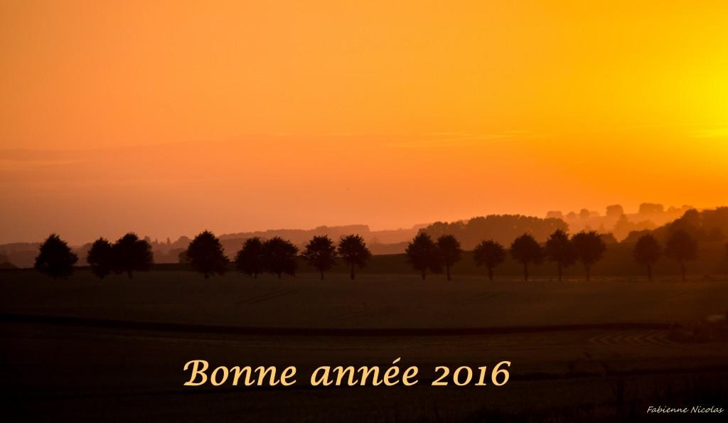 Plaine de Boneffe - Voeux 2016 de Plaine de Vie